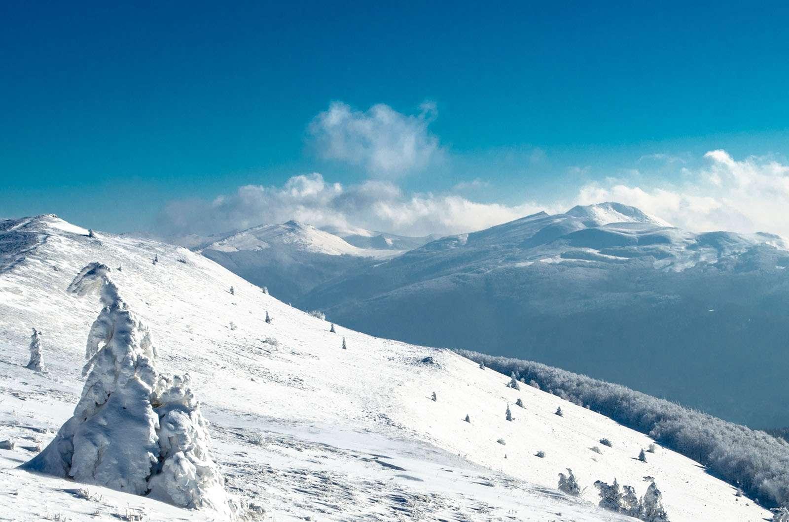 Widok z Połoniny Caryńskiej na Tarnicę zimą.