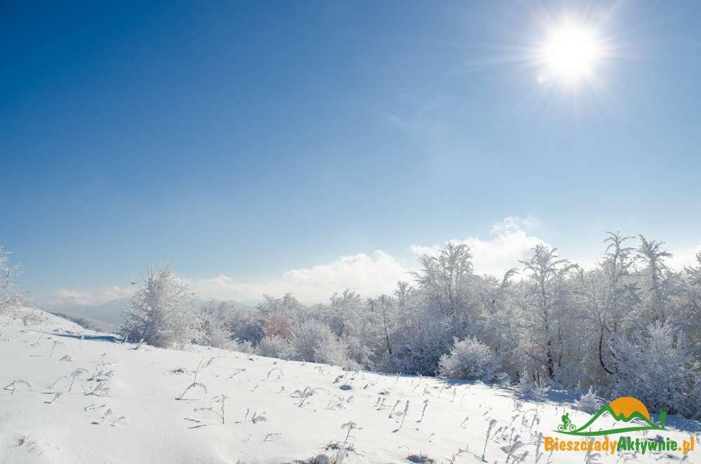 Widok na szlaki w Bieszczadach zimą.